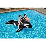 Intex 58561EP - Reittier Whale, 76 x 47 Zoll