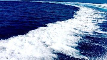Wellen Außenborder