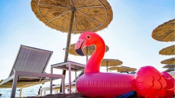 Schwimmtier Flamingo pink